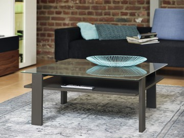 1590_coffee table_PG1