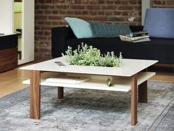 1591_coffee table_PG2